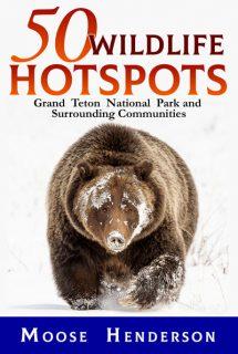 50 Wildlife Hotspots